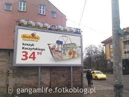 Koszyk Kaczyńskiego ....