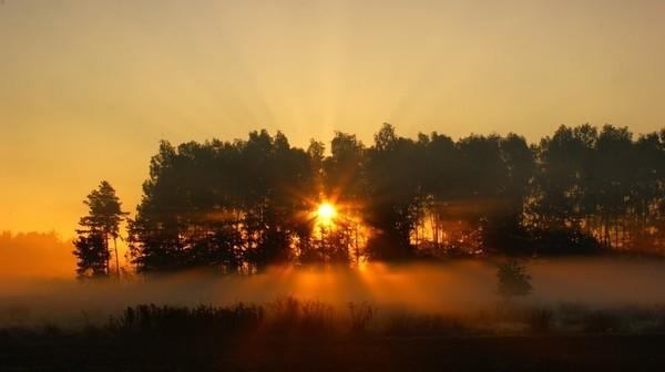 poranek-będzie ładny dzień
