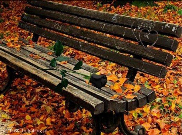 jesienna ławeczka