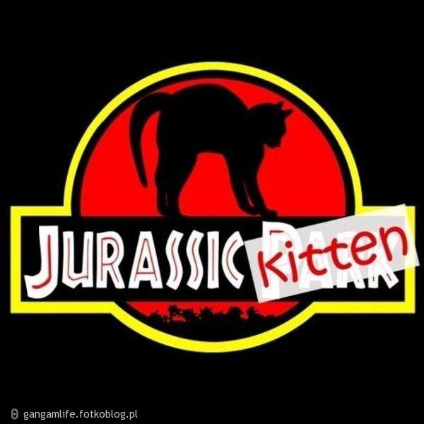 Kot Jurajski :) Już w kinach :D