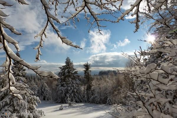Zimowa kraina magii