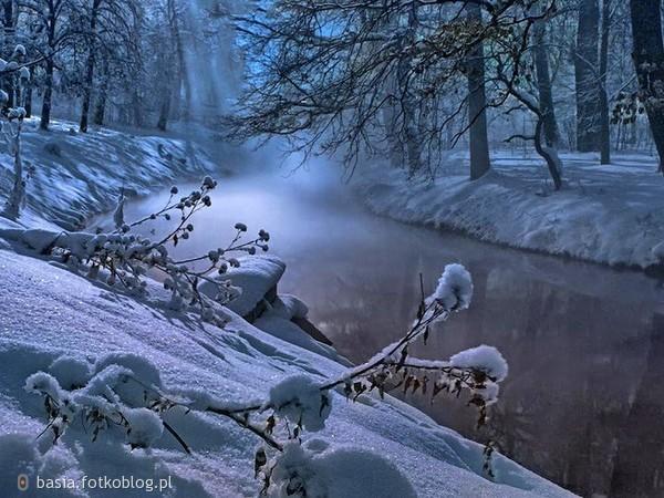 Nawet, spacerując w śniegu z przyjacielem, zima wydaje być się słonecznym środkiem lata.  ..