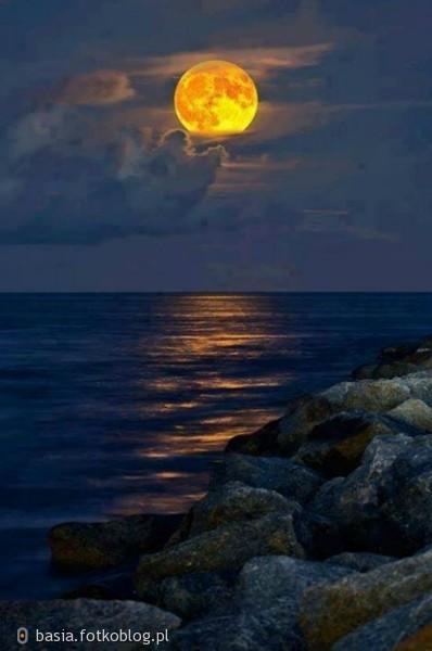 Kiedy dzień przynosi rozczarowanie, noc bywa ukojeniem. ..