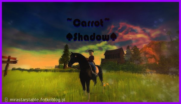Carrot Shadow i...