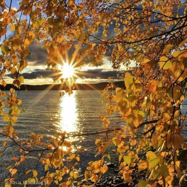 jesienny czas..