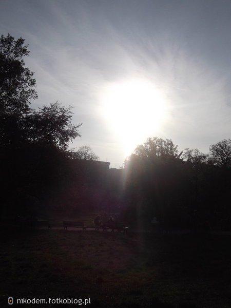 Kropla słońca w listopadzie