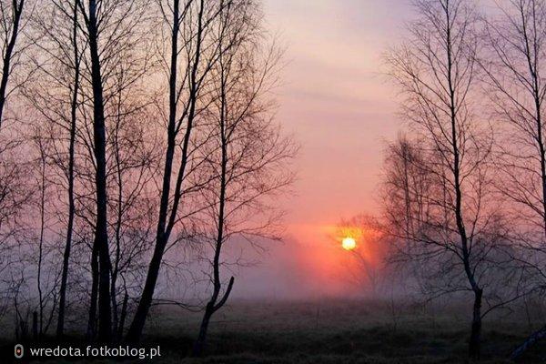 poranek i będzie piękny dzień