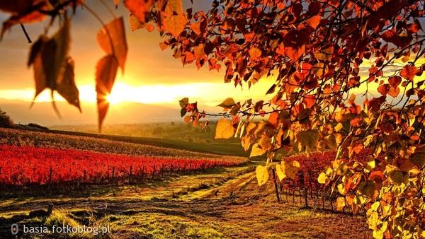 piękne..jesiennie...