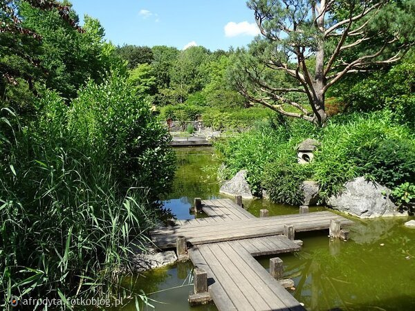 ...jedno z moich ulubionych miejsc West Park -Monachium