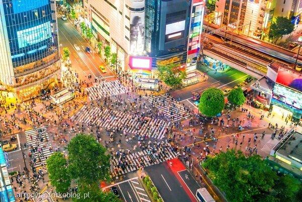 shibuya crossing-jak tu sie nie zgubić!!!