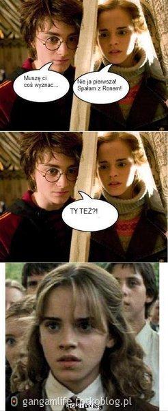 Prawda o Harrym Hermionie i Ronie