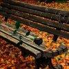 jesienna ławeczka  ::