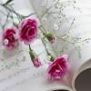 życie ma sens gdy żyć sie umie...gdy jedno serce drugie rozumie..  :: Całe 5....