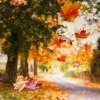 Wiatr unosi liść do góry ale nieważne jak wysoko poleci i tak zawsze spadnie na ziemię.    :: Łapać każdy ciepły pod&shy;much wiat&shy;ru  i&nbsp;uno&shy;si<br />ć&nbsp;się n