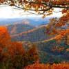 ..piękny widok..  :: Liście jesienne leżą po brzegach dróg, mieniąc się jedną połową tęczy. Wyglądaj