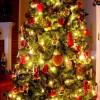 Wesołych Swiąt!!!  :: Tradycyjnie, jak co roku, sypią się życzenia wokół. Większość życzy  świąt obfi