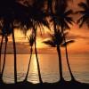 Go to Catalina :)  ::