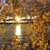 jesienny czas..  ::