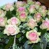 ...Dla Ciebie Basiu.....  :: Słoooońce z okazji urodzin życzę ci byś zawsze czuła się młodo, żeby ci