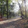 :: Wrocław. Park Tołpy