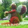 Park Ślaski  :: Zdrowych, miłych i pogodnych marcowych dni życzę . Wspaniałego poniedziałku i tygodnia-_-pozdrawiam