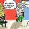 popcornu?  ::